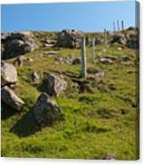 Crofters Fence Canvas Print