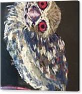 Crooked Owl Canvas Print