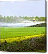 Crop Dusting Canvas Print
