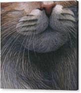 Cropped Cat 4 Canvas Print