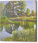 Cross Creek Canvas Print
