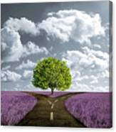 Crossroad In Lavender Meadow Canvas Print