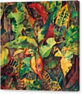 Crotones Canvas Print