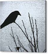 Crow And The Moon Canvas Print