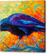 Crow IIi Canvas Print