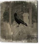 Crow In The Old Graveyard Mix Canvas Print