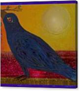 Crow In The Sun Canvas Print