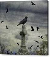 Crow Keeps Her Perch Canvas Print