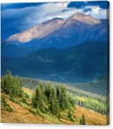 Crow On A Mountainside Canvas Print