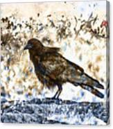 Crow On Blue Rocks Canvas Print