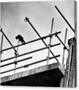 Crow Watches Over Canvas Print