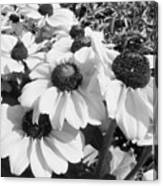 Crowded Flowers Canvas Print