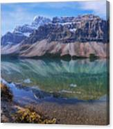 Crowfoot Reflection Canvas Print