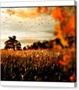 Crows And Corn Canvas Print