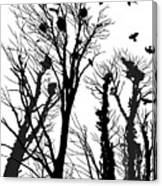 Crows Roost 1 - Black And White Canvas Print