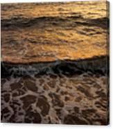 Cruise Ship Off The Beach Canvas Print