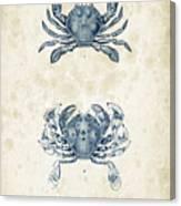 Crustaceans - 1825 - 05 Canvas Print