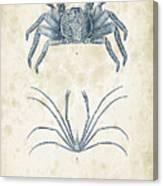 Crustaceans - 1825 - 14 Canvas Print