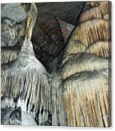 Crystal Cave Portrait Sequoia Canvas Print