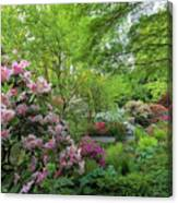 Crystal Springs Rhododendron Garden In Bloom Canvas Print
