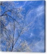 Crystalline Sky Canvas Print
