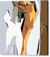 Cubism Series Xvi Canvas Print