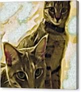 Curious Cats Canvas Print