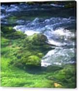 Current River 8 Canvas Print