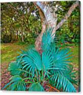 Curves And Fronds Canvas Print