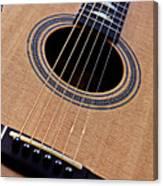 Custom Made Guitar Canvas Print
