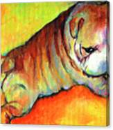 Cute English Bulldog Puppy Dog Painting Canvas Print