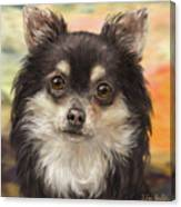 Cute Furry Brown And White Chihuahua On Orange Background Canvas Print