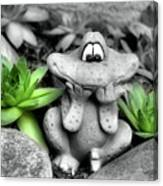 Cute Garden Frog And Succulents Canvas Print