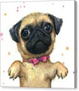 Cute Pug Puppy Canvas Print