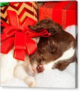 Cute Puppy With Red Bow Sleeping By Gifts Canvas Print
