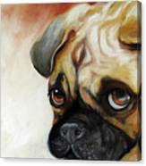 Cutie Pie Pug Canvas Print