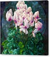 Cyclamen In Orbit Canvas Print