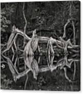 Cypress Design Canvas Print