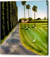 Cypress Palms Canvas Print