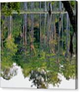 Cypress Pond Canvas Print
