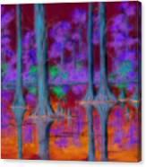 Cypress Reflection Canvas Print