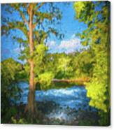 Cypress Tree By The River Canvas Print