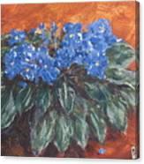 D Violets Canvas Print