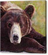 Da Bear Canvas Print