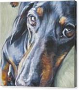 Dachshund Black And Tan Canvas Print