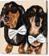 Dachshunds And Bowties Canvas Print