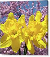 Daffodil Flowers Spring Pink Tree Blossoms Art Prints Baslee Troutman Canvas Print
