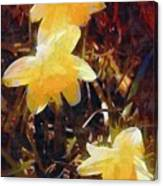 Daffs Gone Goth Canvas Print