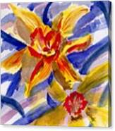 Daffy Dills Canvas Print