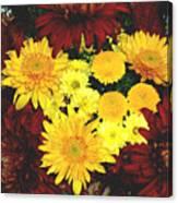 Dahlia Display Canvas Print